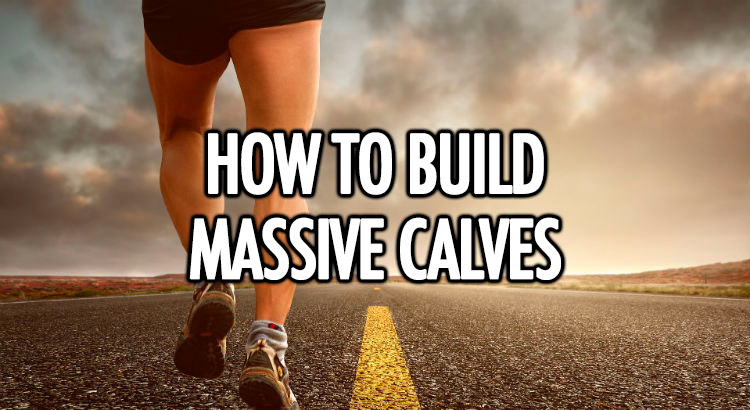 How to build big calves