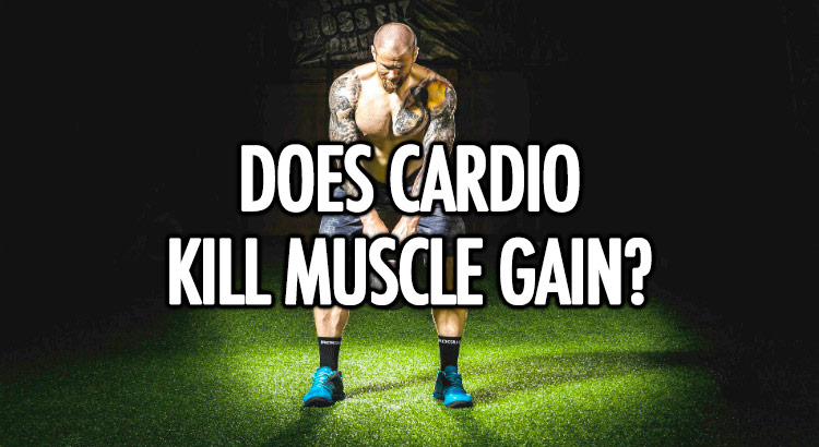 Does cardio kill muscle gain?