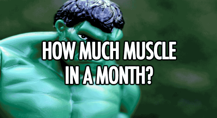 How much muscle can you build in a month?