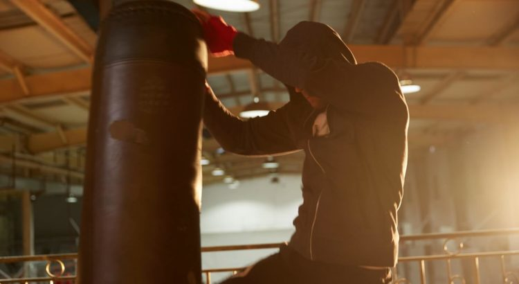 Punch Bags for Home Boxing & Workouts
